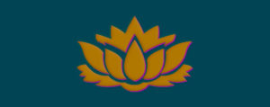 goldpink-on-bluegreen-lotus-680