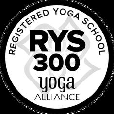 rys-300-round