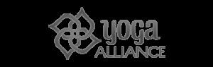 YA-Logo-BW 640x202 copy